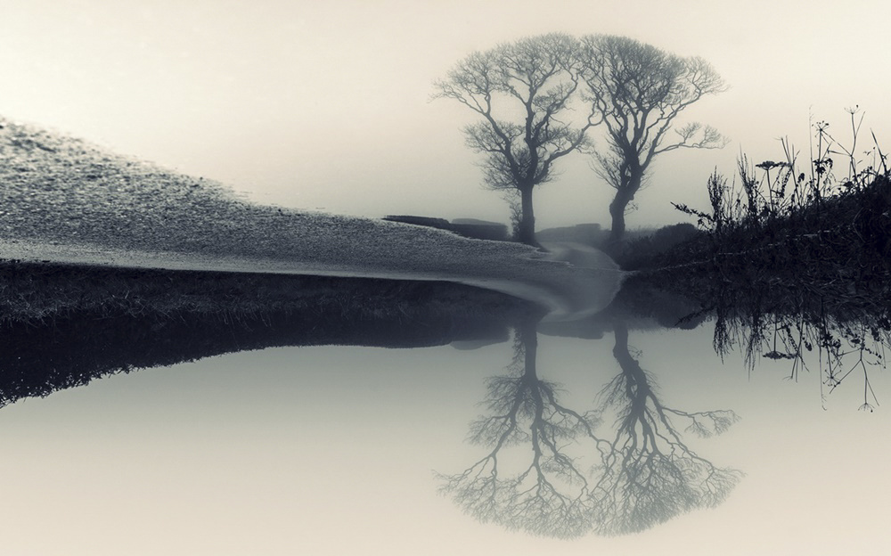 the Scottish Kissing Trees over a wintery pond