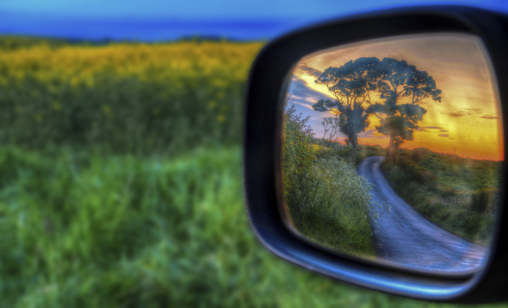 trees in a rearview mirror of a car