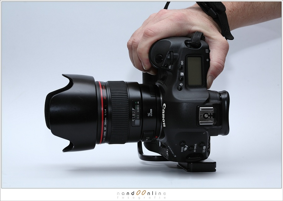 My Canon EOS 1D mark III also had a L-bracket. It gave a lot of protection from damage when placing the camera on stage during concert photography, just like in this example.