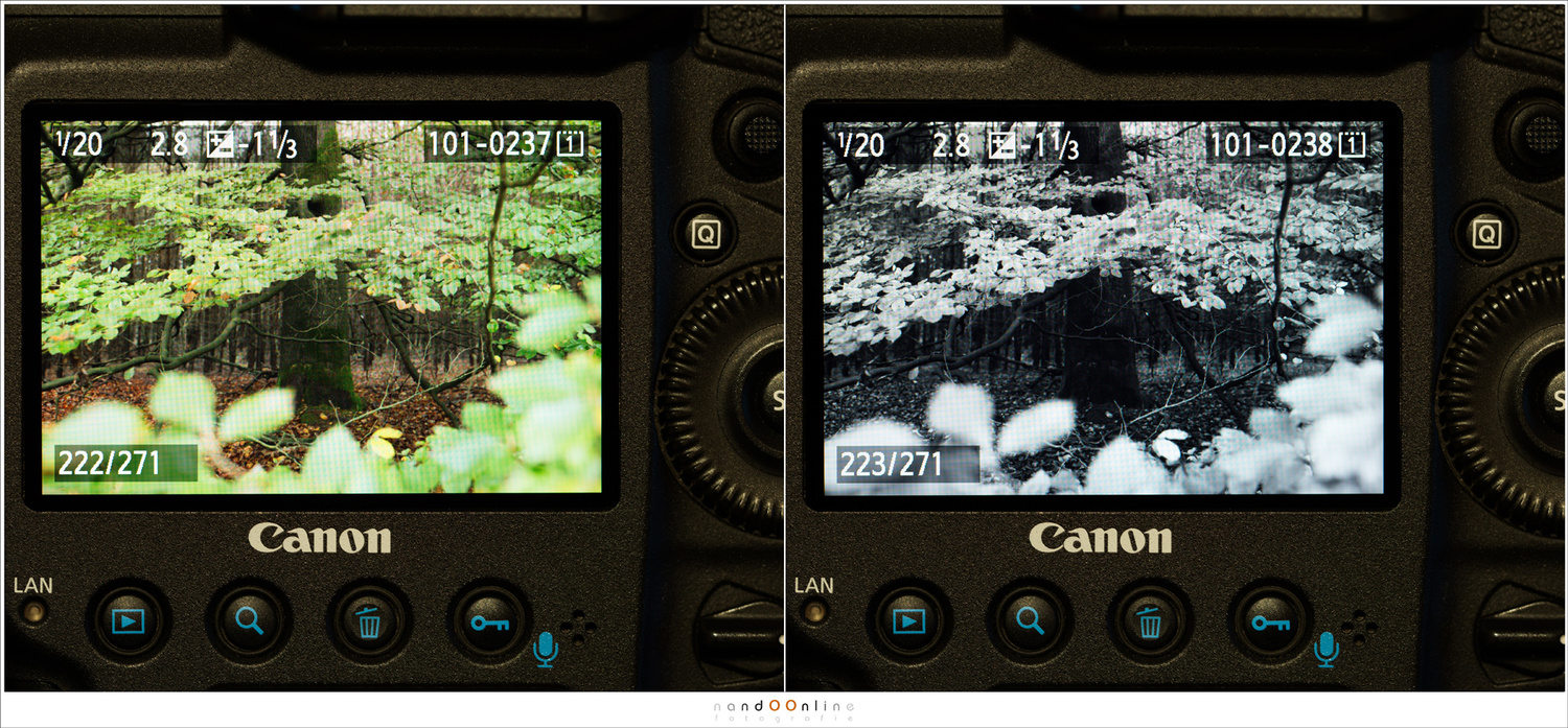 You might think a scene will work in black and white when you look at the color preview on the LCD screen of your camera. By looking at the preview in black and white, it is easier to see if the black and white will turn out.