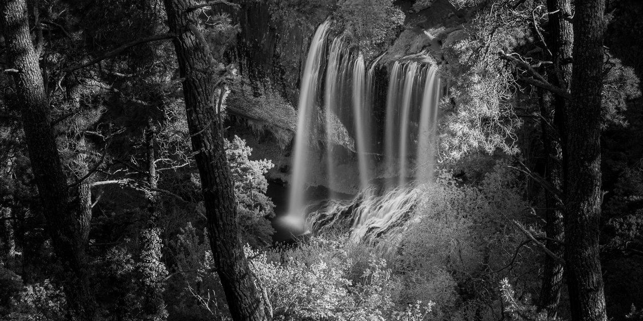 The brightness of the waterfall and leaves are almost the same, which becomes visible after the conversion to black and white. There are almost no bright areas in the picture. By darkening the leaves the contrast will become better. You could even brighte