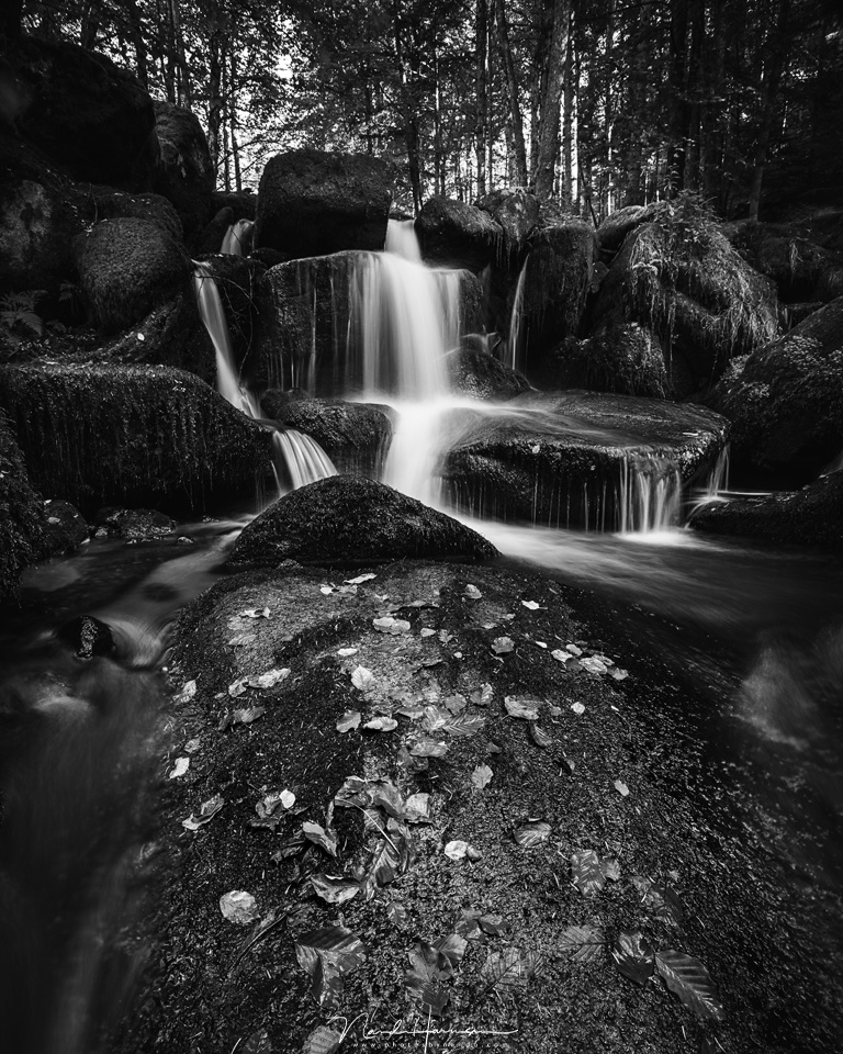 When there is a high contrast, always expose on the brightest part of the image, in this case the waterfall. By exposing as long as possible without blowing out highlights, you maintain the maximum amount of detail in the dark areas of the image. (EOS 5D4