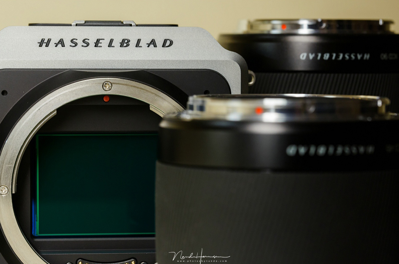 The sensor of the Hasselblad X1D is wonderfull. It has more that enough pixels and the dynamic range is amazing.