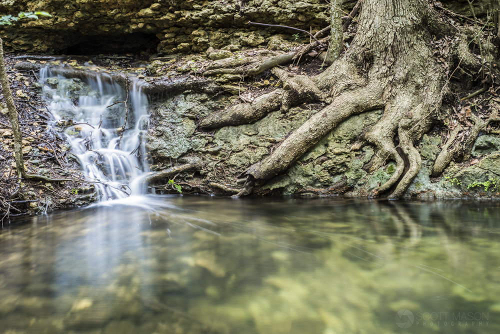 image of a waterfall over a pond, with a tree trunk and roots next to it