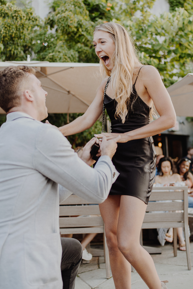 Wedding proposal photography - Brooklyn Wedding Photo