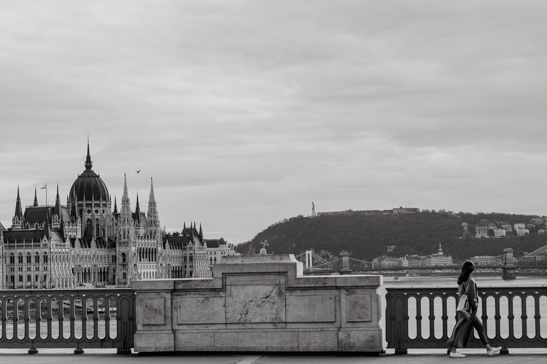Budapest castle and bridge.