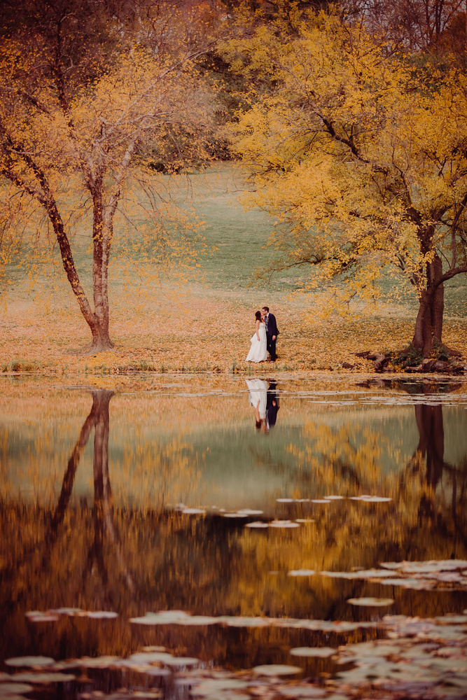 newlyweds stand under trees by a lake