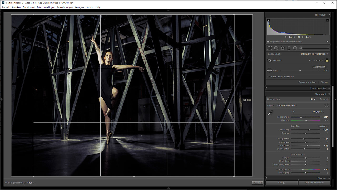 By choosing the crop tool in Lightroom, you have the ability to show different grids. Switch with the letter 'o'  and 'shift-o'. In this example we see the rule of thirds.