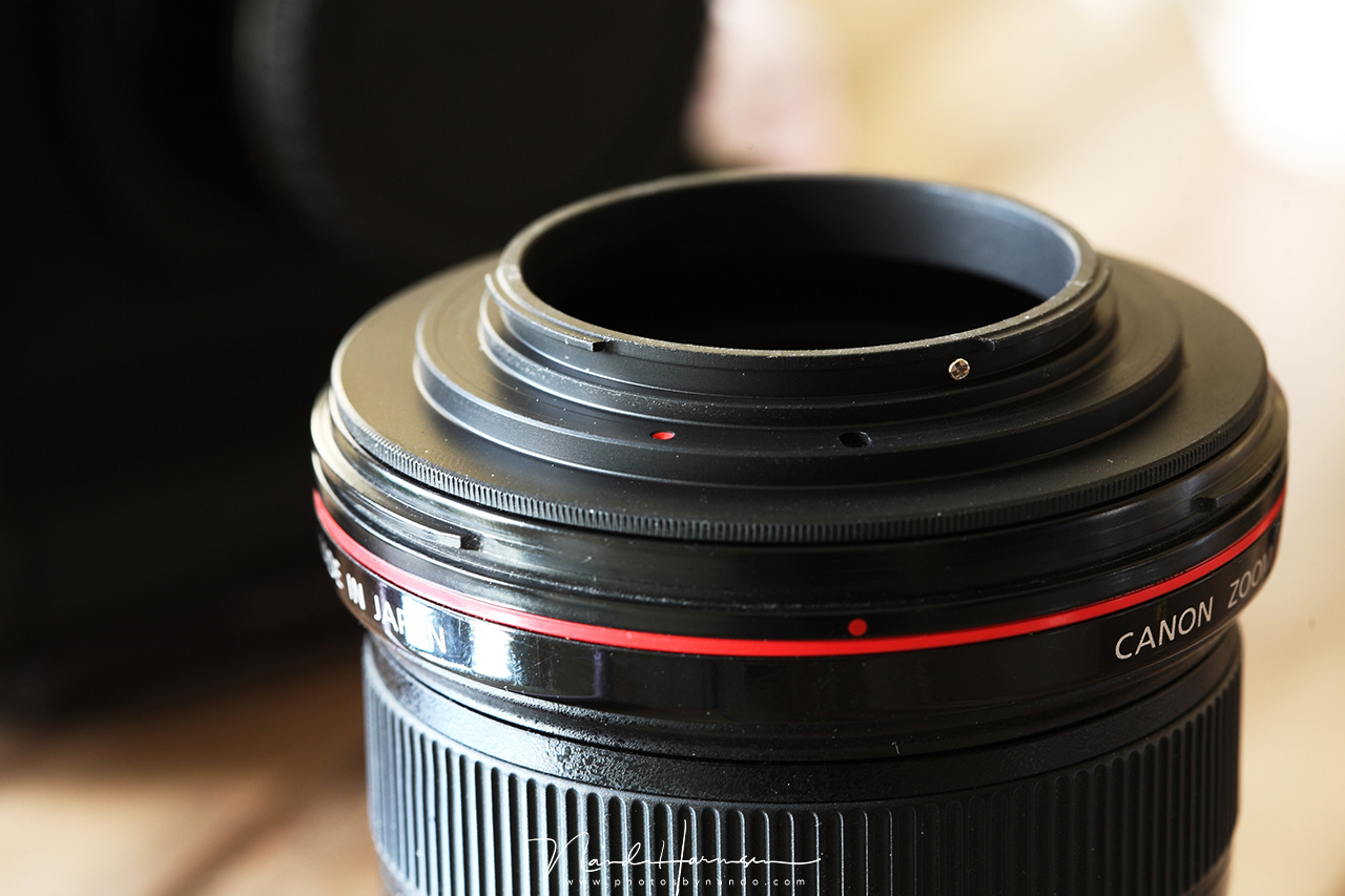 A reverse ring fitted onto a Canon EF17-40mm f/4L lens.