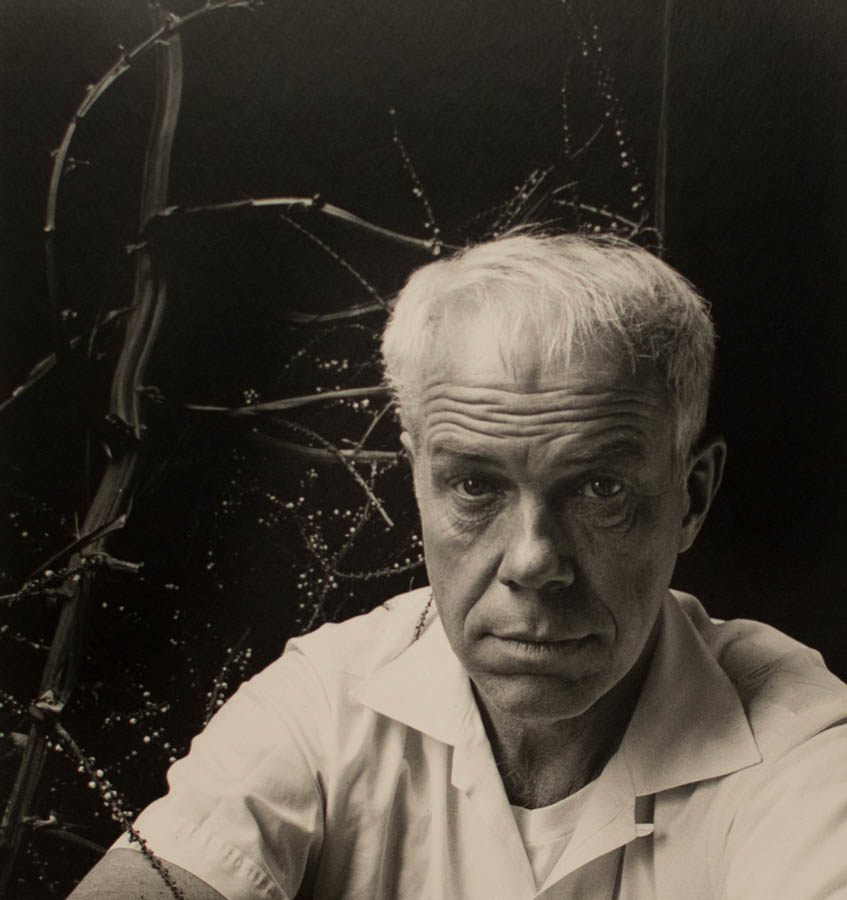 a portrait in front of trees by Imogen Cunningham in sepia