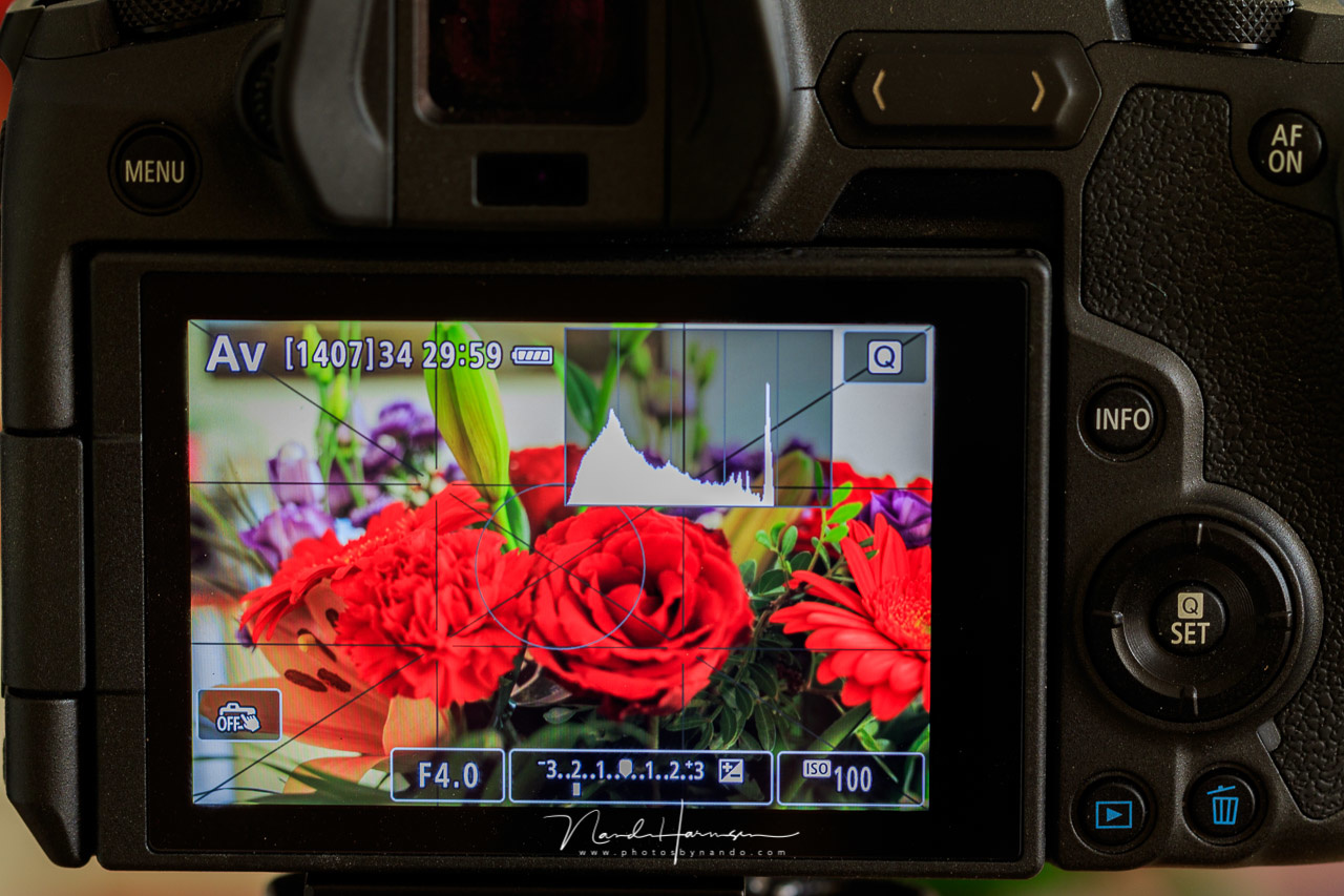 This is an example of a picture style on the Canon EOS R with low contrast and reduced saturation. Look again at the histogram, which is very different compared to the previous image.