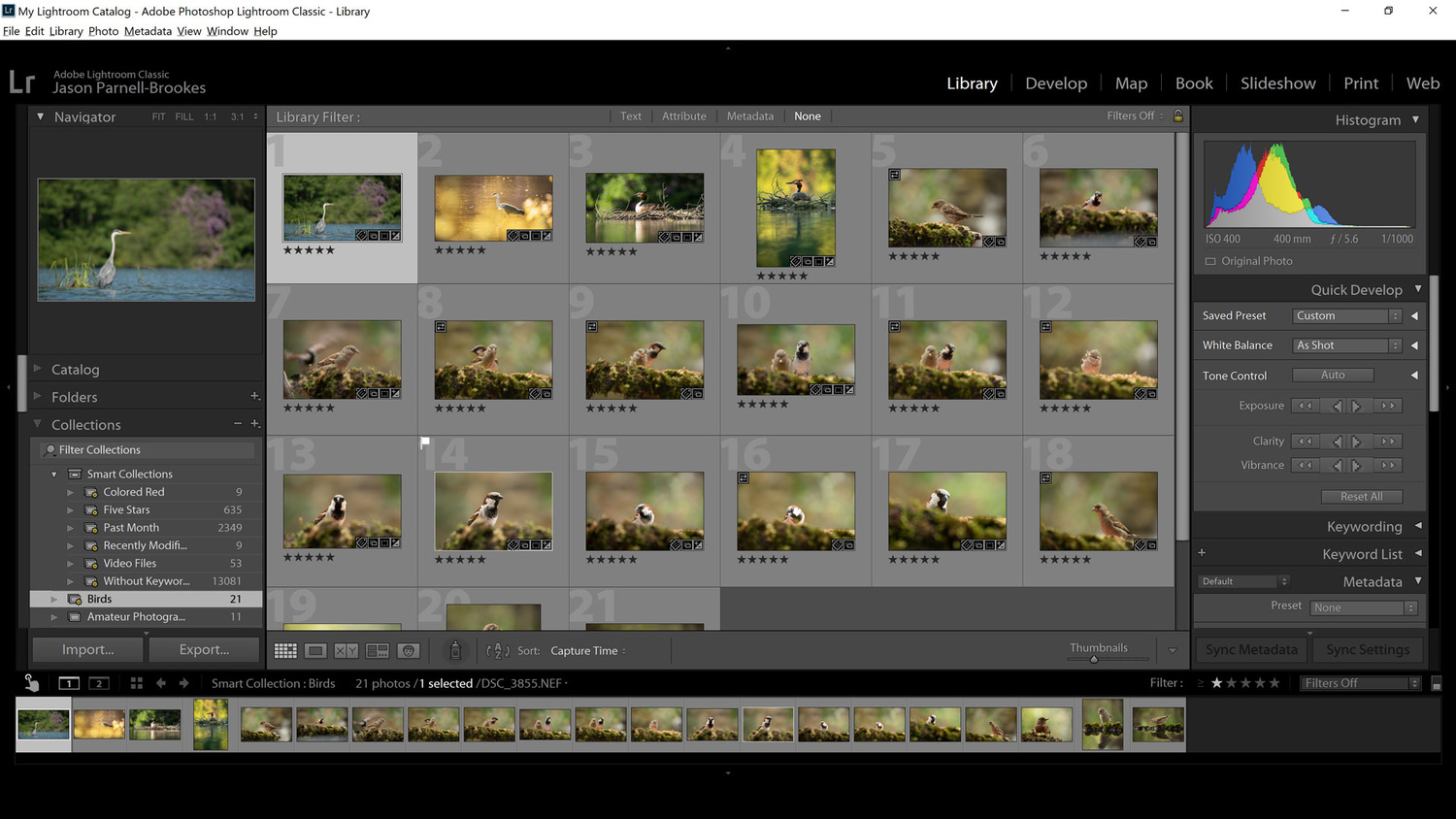 Screenshot showing Smart Collection creation complete in Lightroom