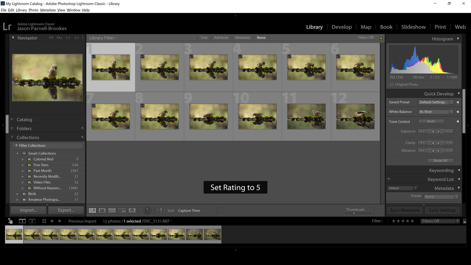 Screenshot showing images appearing in Smart Collection after they meet criteria set