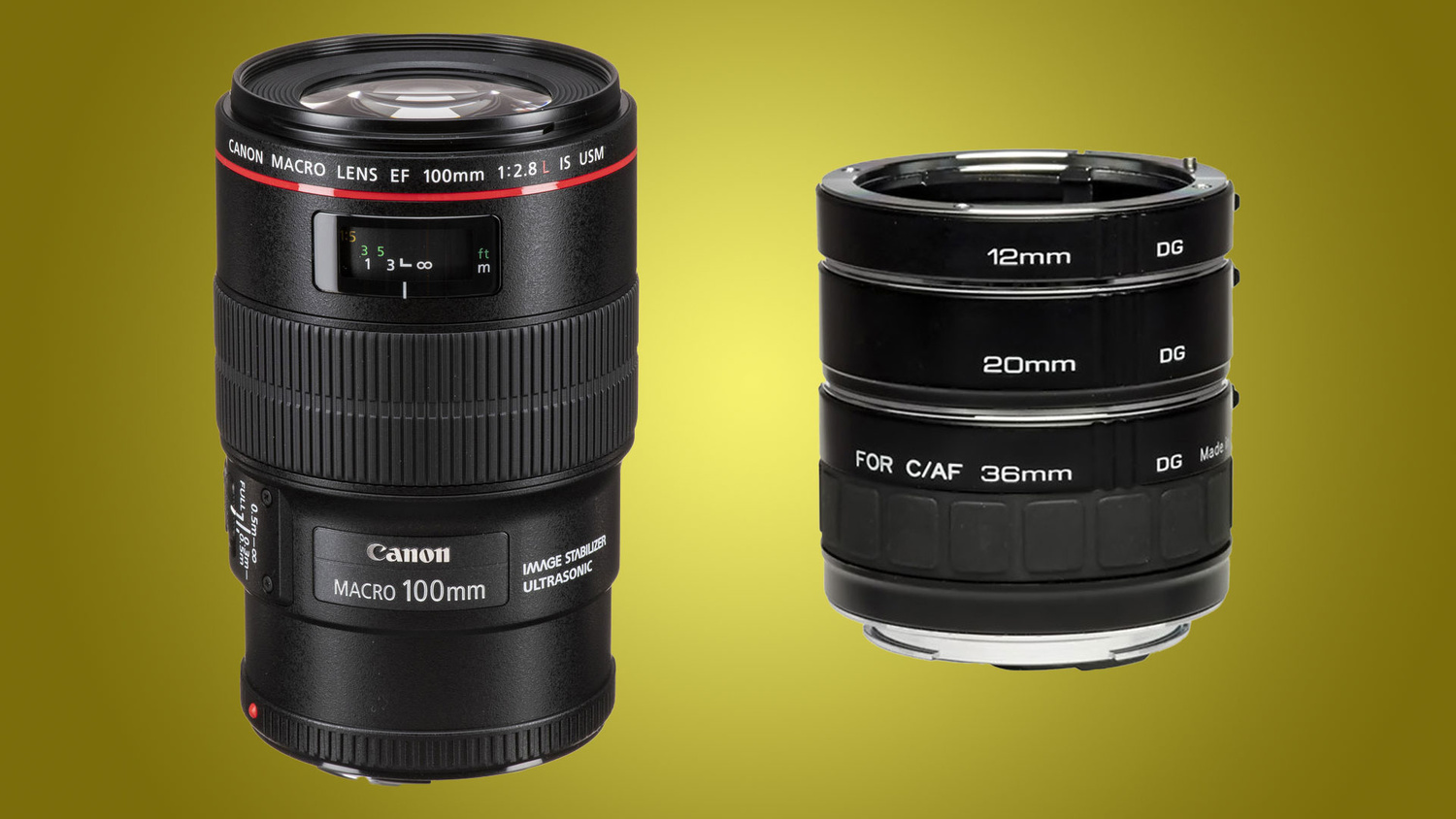 Macro lens and extension tubes example image