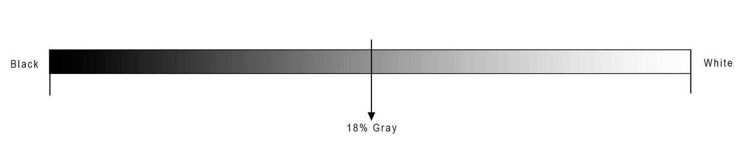 Do You Use the Gray Card for the Reason It Is Meant For? 1