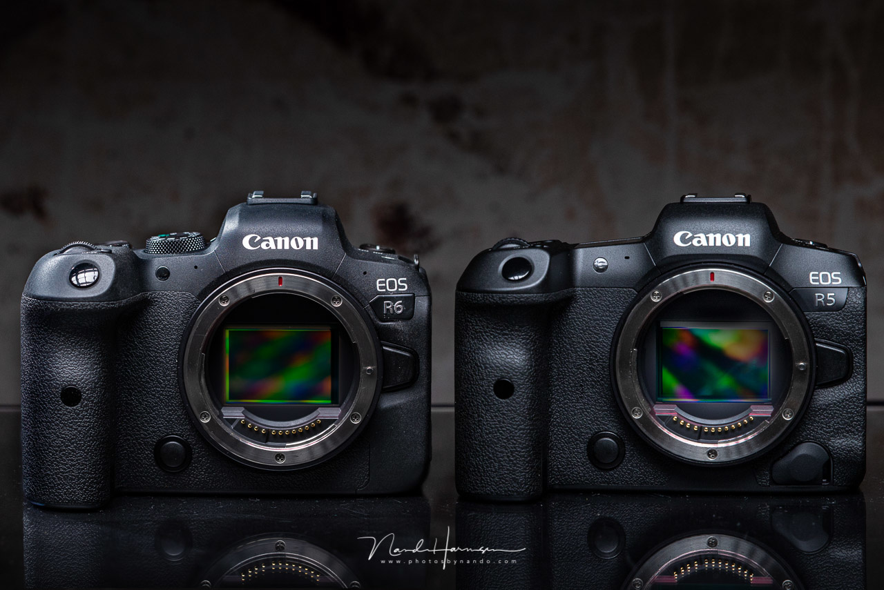 The Canon EOS R6 next to the Canon EOS R5. Can you spot the differences? As you can see, there are many although they look the same at first glance (photo is a digital merger between two seperate photos)