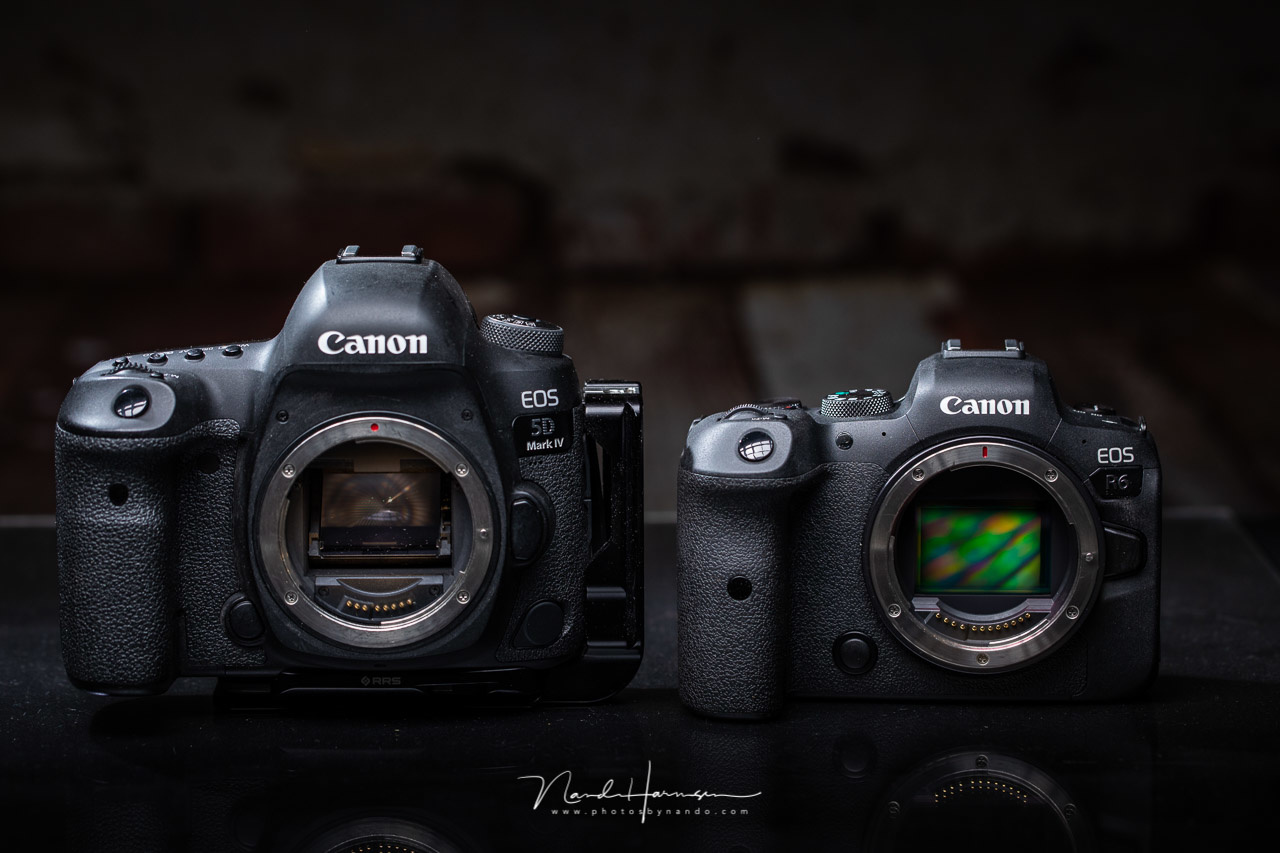 At the moment I still use a Canon EOS 5D mark IV, it is an amazing camera. But the Canon EOS R6 has a lot of benefits over the DSLR.
