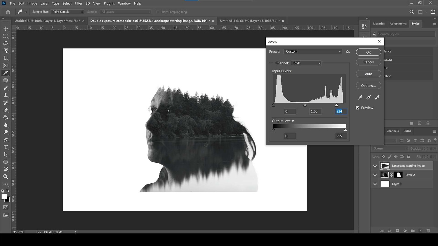 Add a levels adjustment to the landscape layer