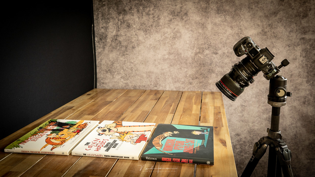 I made another example with these books, now with the camera also tilted.