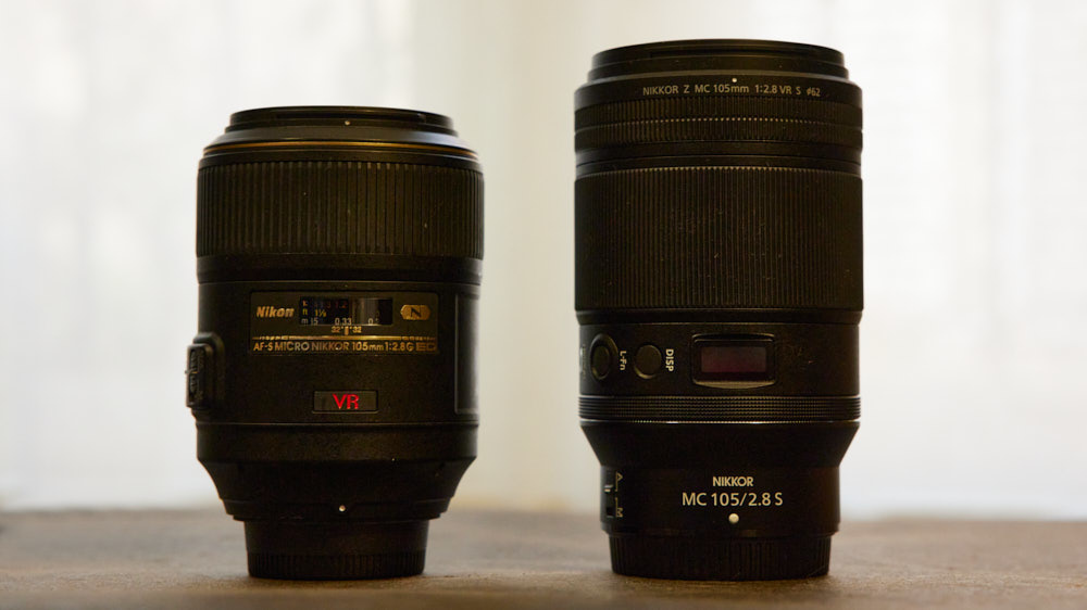 Go Small Or Go Home: The Nikon NIKKOR Z MC 105mm f/2.8 Macro 57