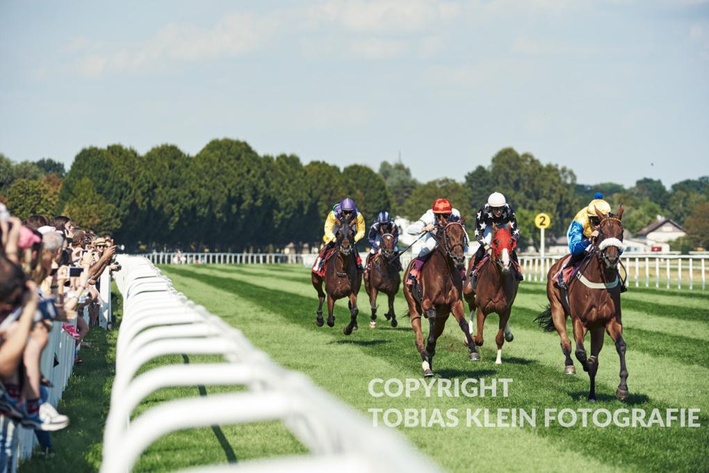 Horse Racing by Tobias Klein