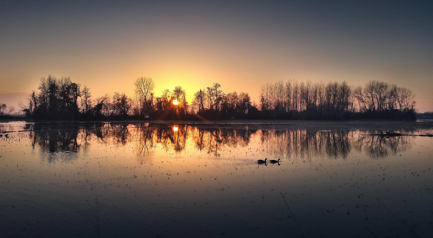 lake by ali gorohi