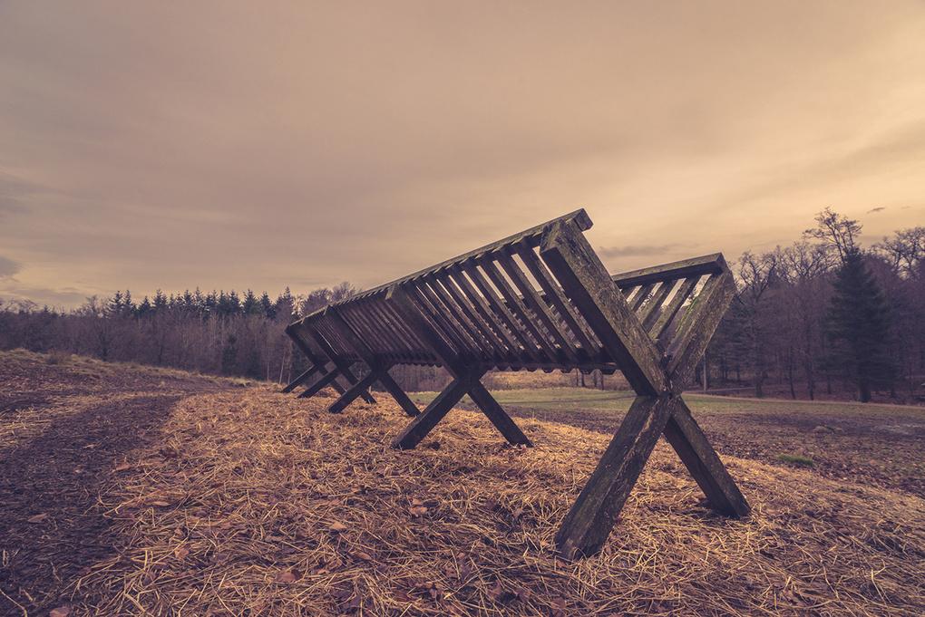 Feeding stand on a field by Kasper Nymann