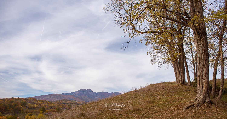 the  summit  by D O Pandurasu