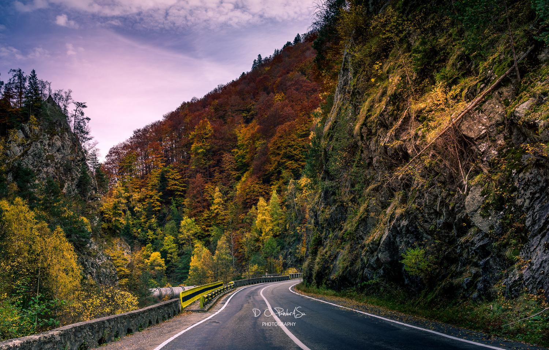 on the road by D O Pandurasu