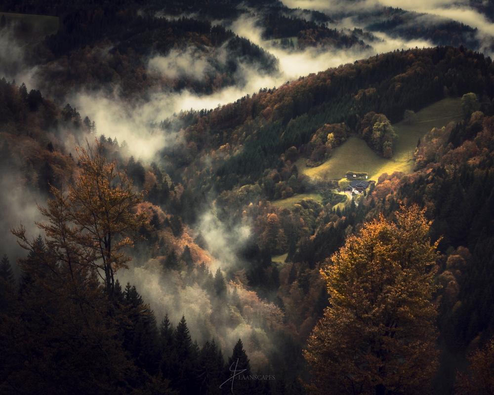 Homestead by Daniel Laan