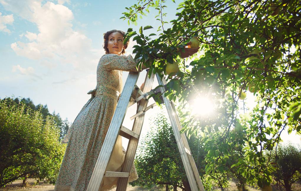 Pear Picking by Kate Woodman