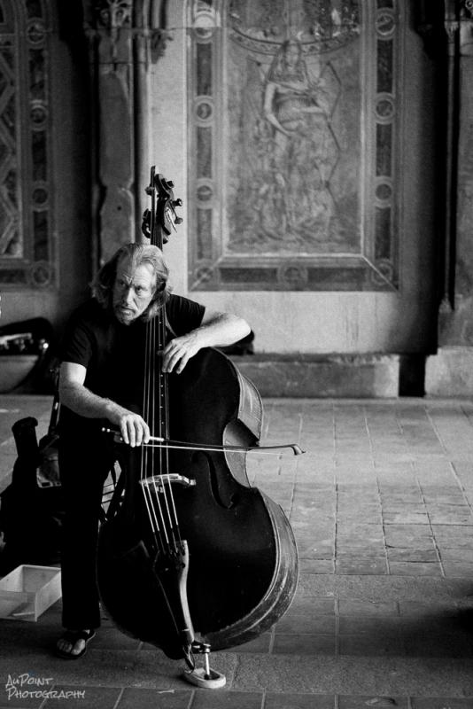 Cello Player by Vince Arredondo