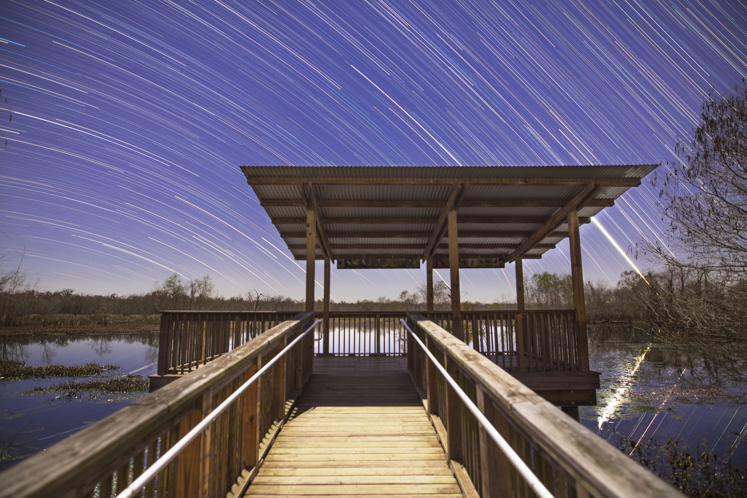 Star Trails over Brazos Bend by Zach Alan