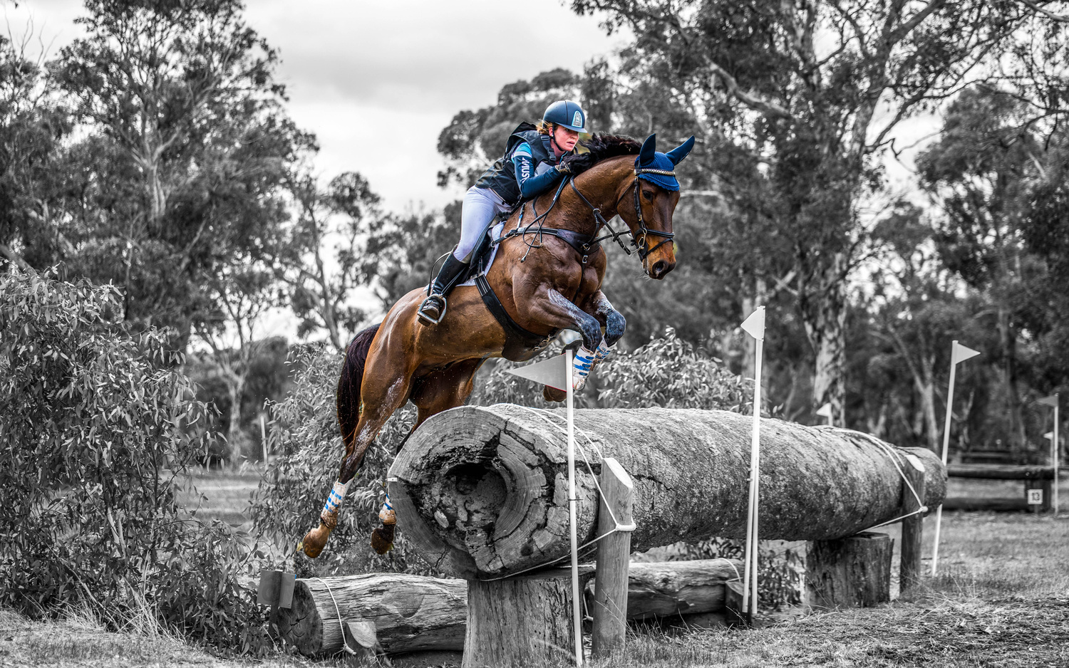 Eventing  by Campbell Sinclair