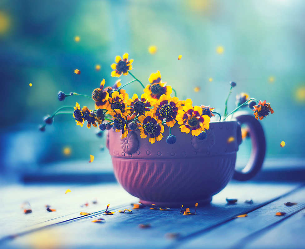 Happy Everyday by Ashraful Arefin