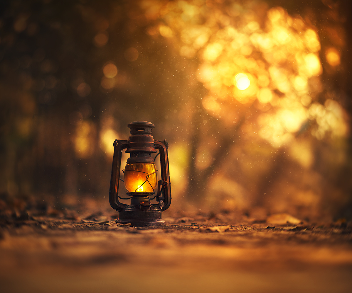 Lights will guide you home by Ashraful Arefin