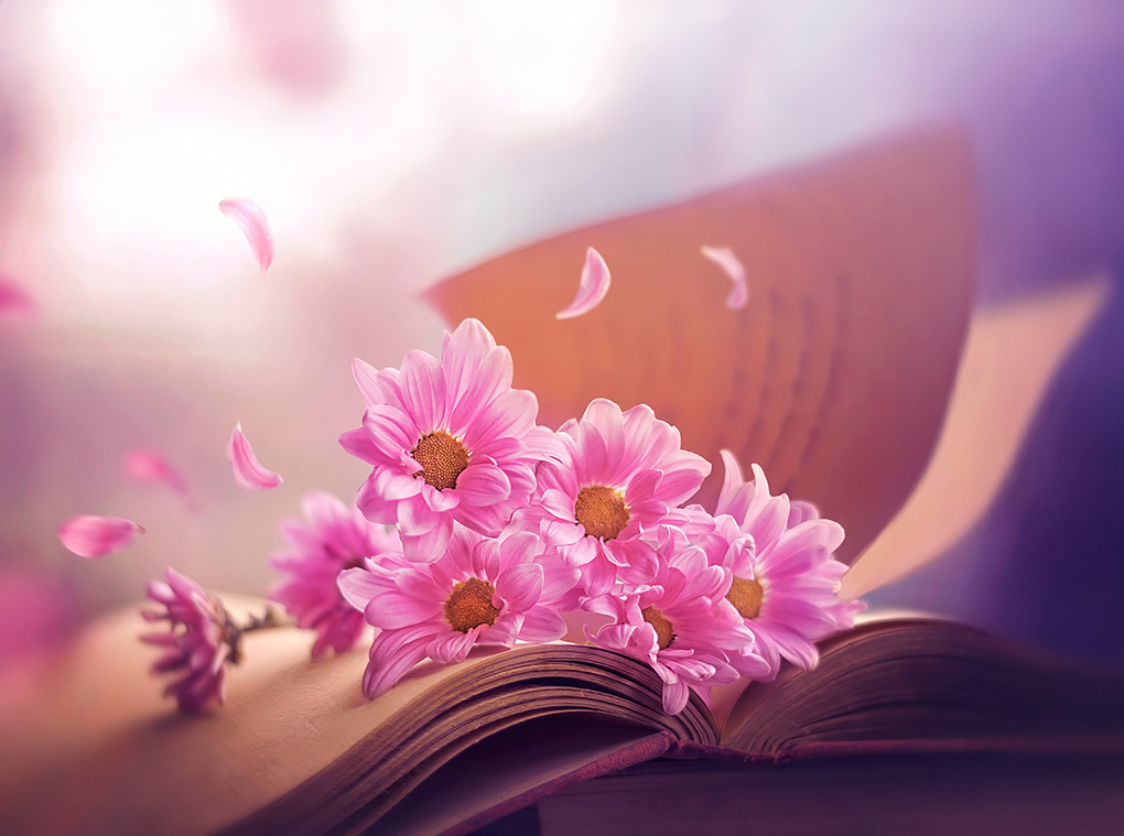 April stories by Ashraful Arefin