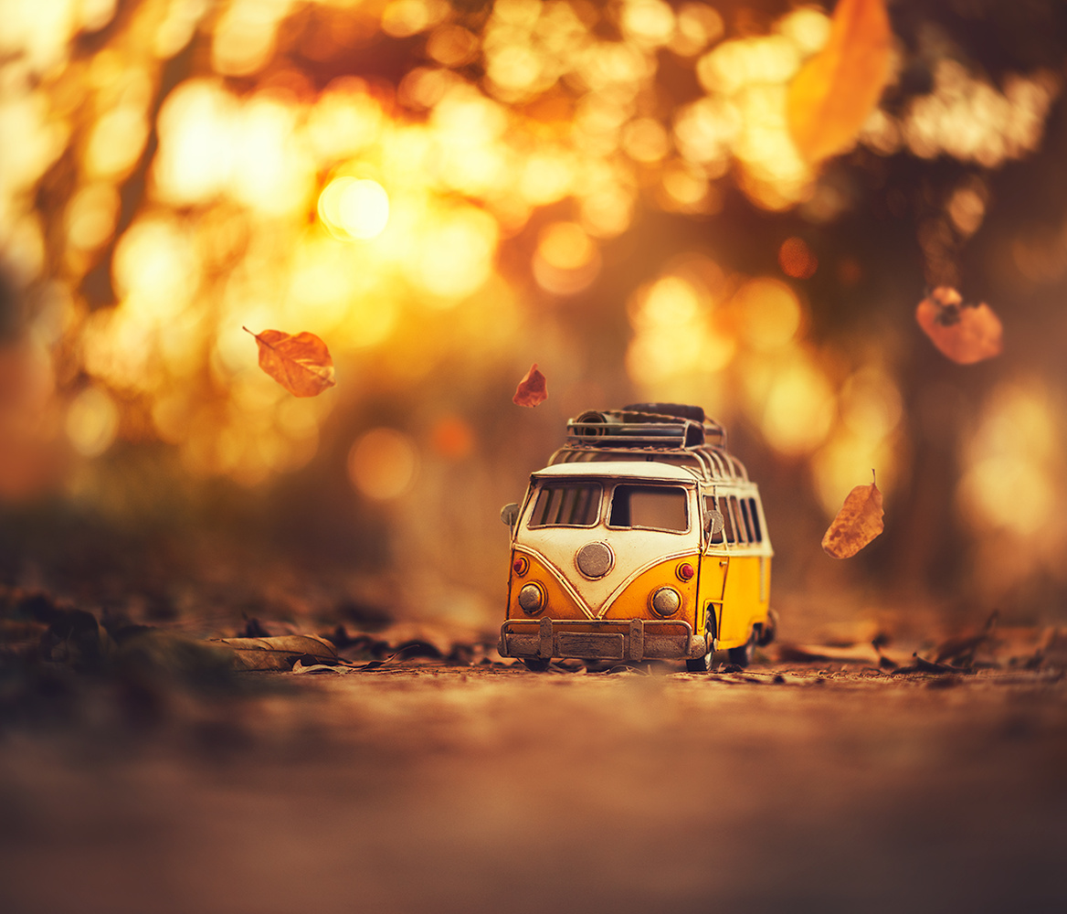Little Wanderer by Ashraful Arefin