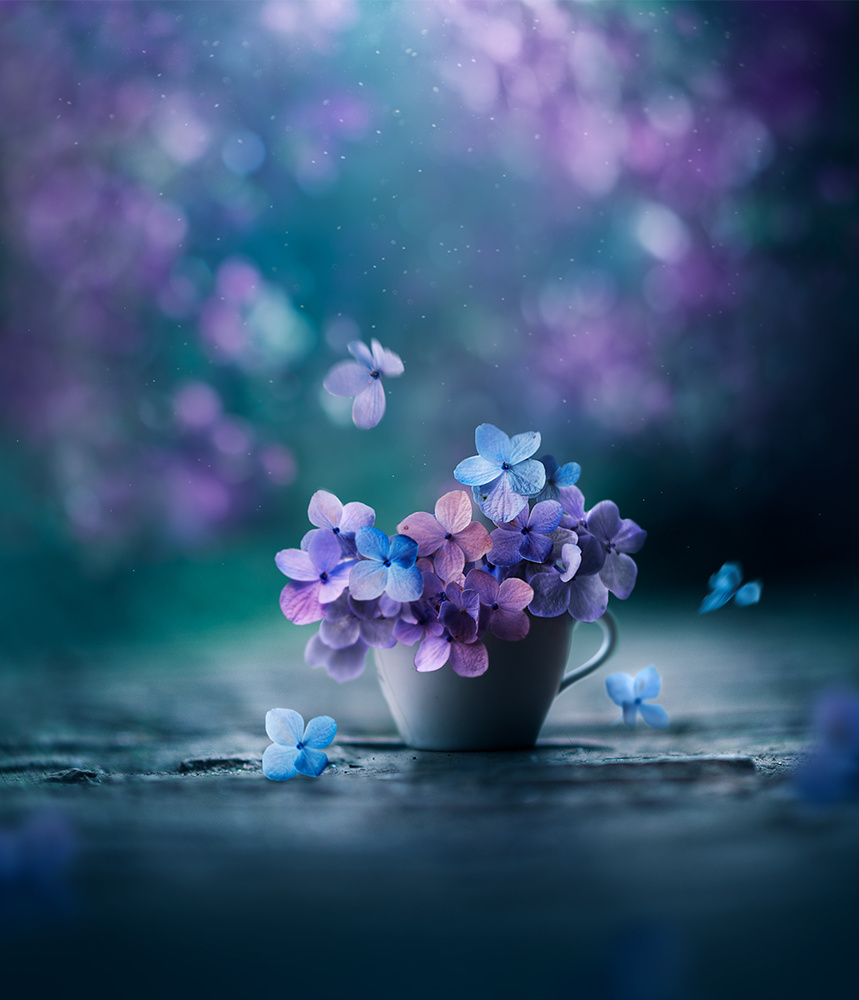 Spring poem by Ashraful Arefin