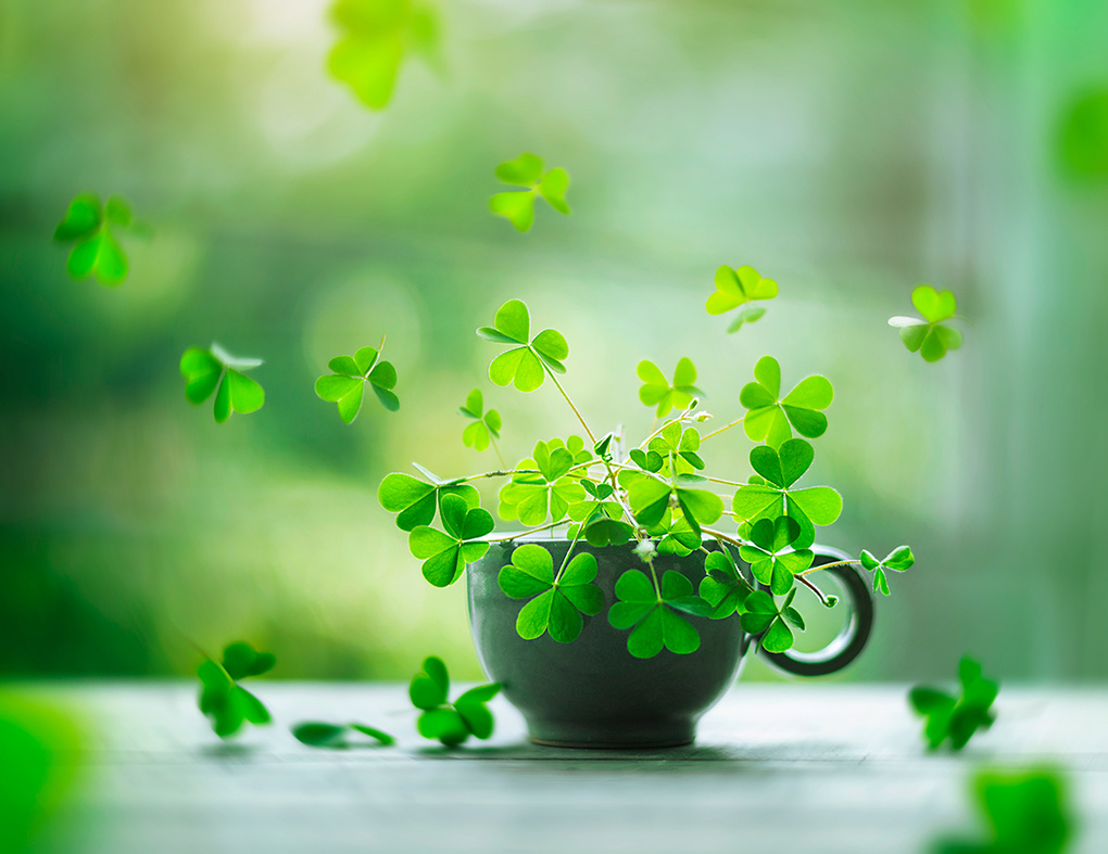 Cup of luck by Ashraful Arefin