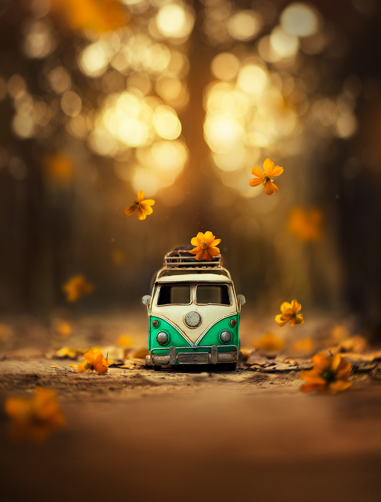 Story of the journey  by Ashraful Arefin