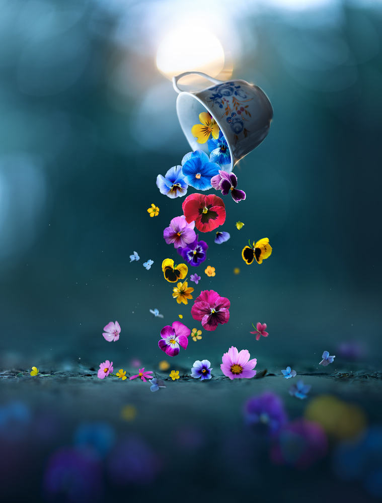 Cup of Spring by Ashraful Arefin