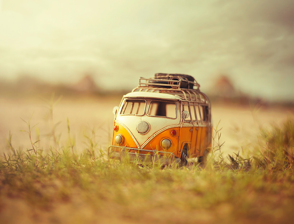 One summer's day by Ashraful Arefin
