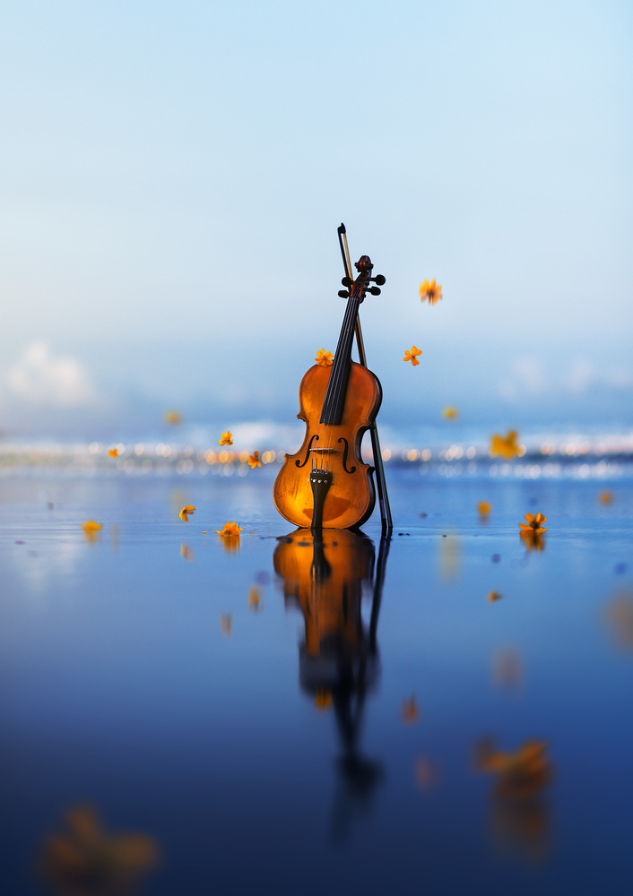 Music of soul  by Ashraful Arefin