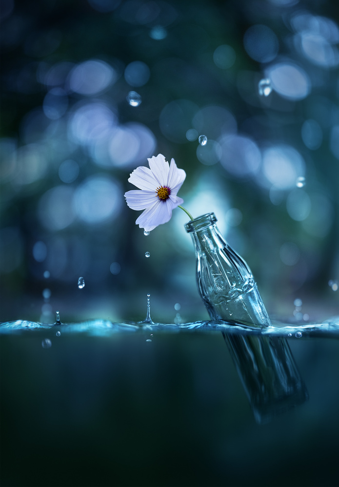 Against all odds by Ashraful Arefin