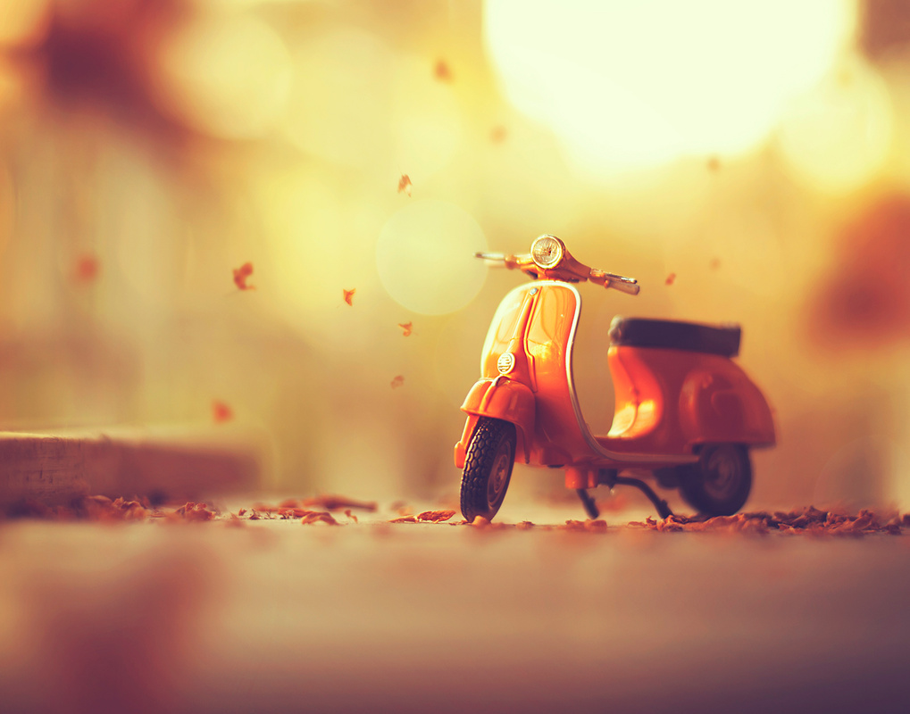 Autumn's arrival by Ashraful Arefin