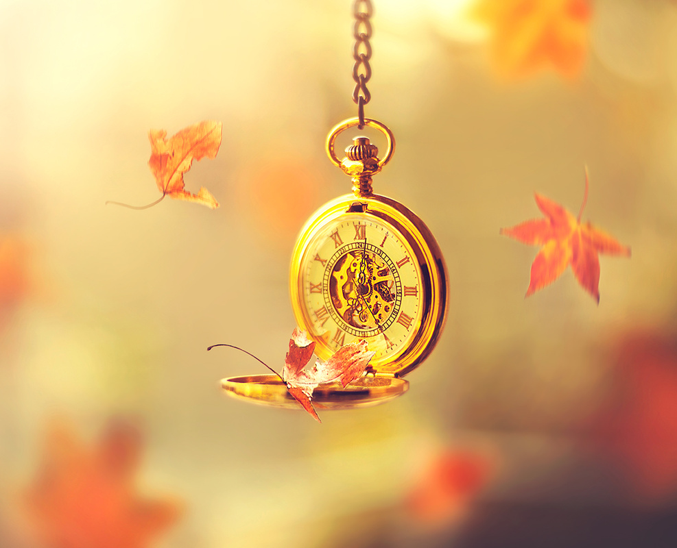 Time to fall by Ashraful Arefin