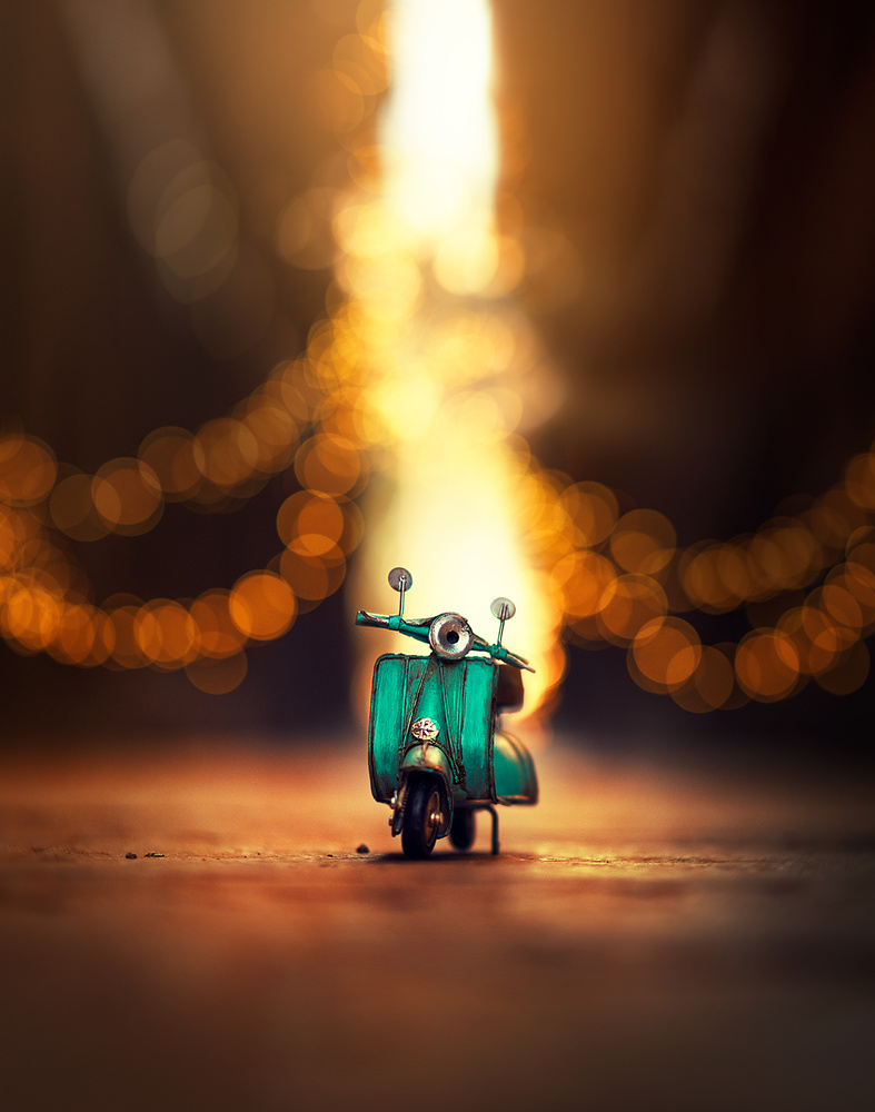 Little explorer by Ashraful Arefin