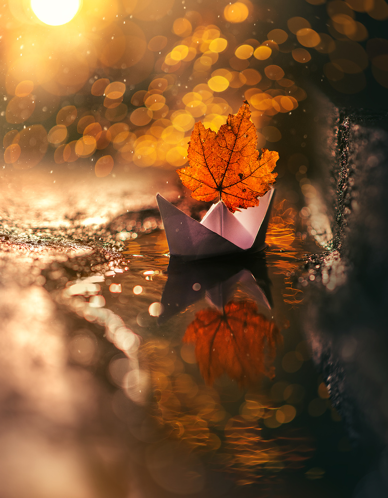 Together by Ashraful Arefin