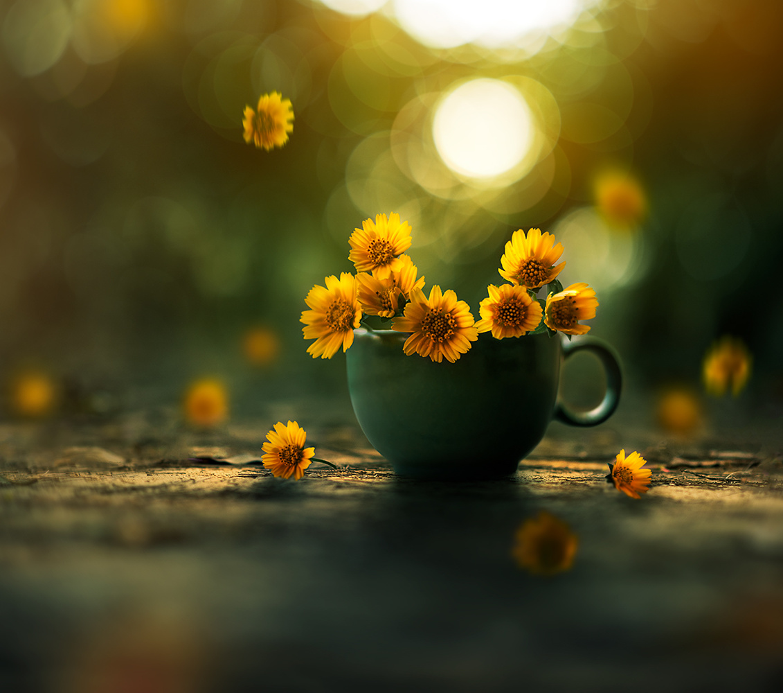 Cup of gold by Ashraful Arefin